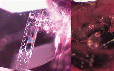Figure 1. Natural ruby. Figure 2. Heat-treated ruby