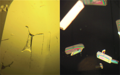 Figure 1. (left) Inclusion consisting of a liquid phase with a vapour bubble. Figure 2. (right) Polariscope-revealed inclusion
