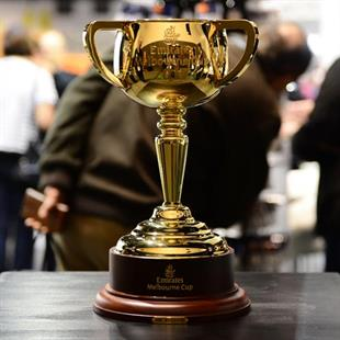 Visitors could view the 2017 Emirates Melbourne Cup