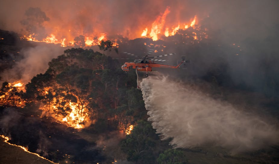 Jewellery industry shows support for Australian bushfire victims