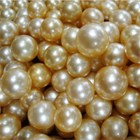 Pearls from a gold-lip oyster