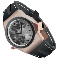 Astronomically expensive watch