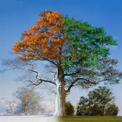Navigating the switch of seasons in retail.
