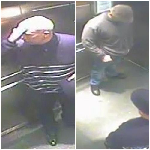 CCTV footage show two men suspected to have stolen the jewellery. Image: Victoria Police