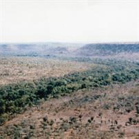 M109, Pteropus Creek, 1973
